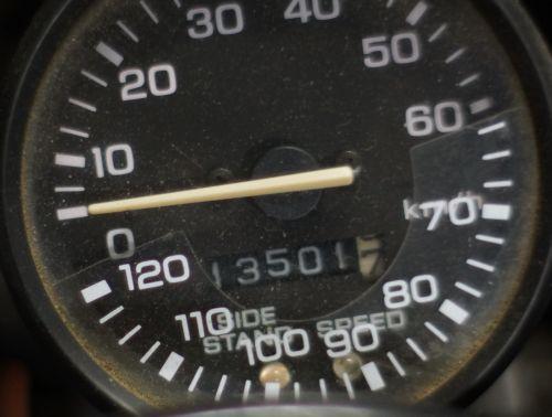 DSC07029c.jpg
